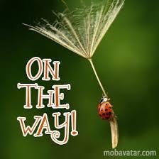 0n the way